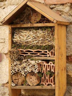 Building supplies for ladybirds, bees, butterflies, and birds! #homesfornature