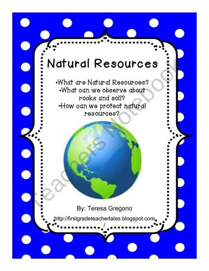 Are natural resources a blessing or a curse for developing countries?