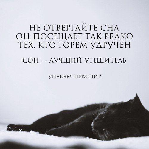 Ярослава Черепаня