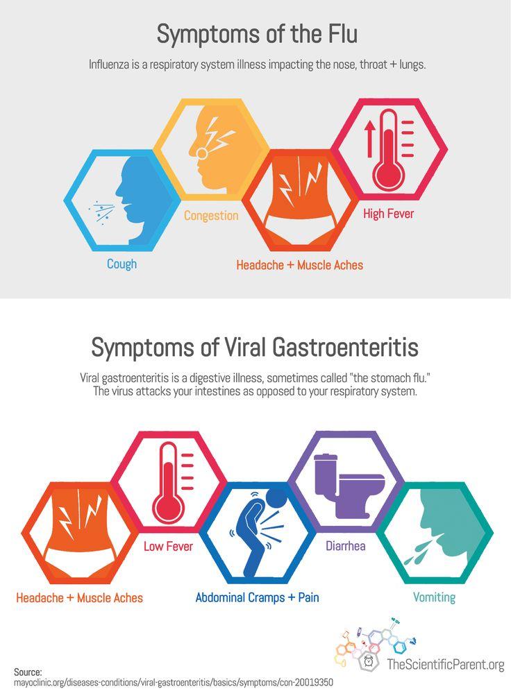 top 25+ best symptoms of norovirus ideas on pinterest | flu, Human Body