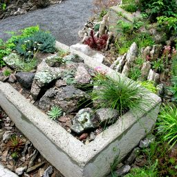 Find This Pin And More On Alpine Gardens By Mastergartener.