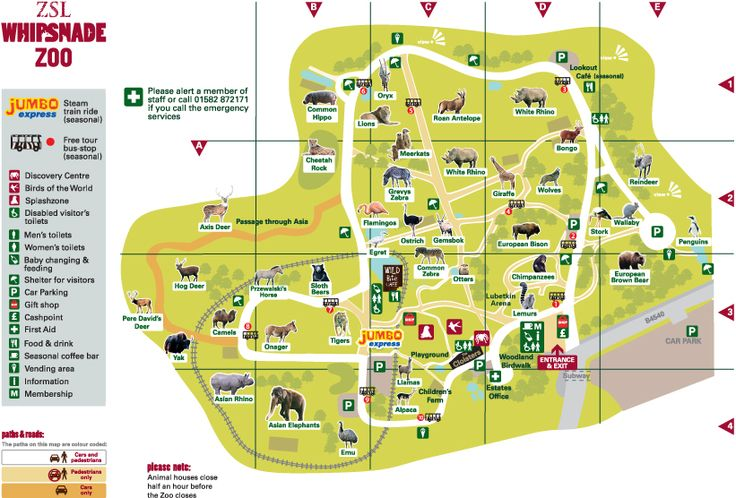 Whipsnade zoo map 2015 | Paruqez Zoo maps | Pinterest