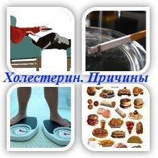 Причинами того, что уровень плохого холестерина в крови (ЛПНП) повышается, являются все факторы, которые можно отнести к не здоровому образу жизни