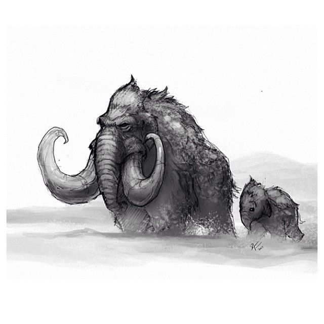 Some wooly mammoths for tonight's drawing. #animals #art #wildlife #woolymammoth #conceptart #creaturedesign #instaart #illustration #drawing #draw #sketch