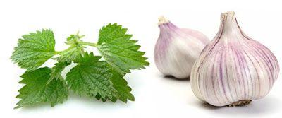 La Buena Salud Es Vida: Usted tiene la presión arterial baja: Estos dos al...