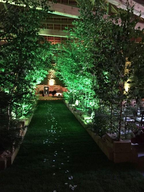 Unsleben Grüne Hochzeit
