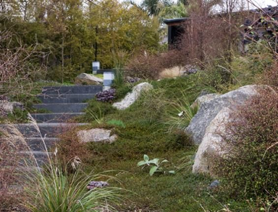 Xanthe White | The Garden Design Society of New Zealand