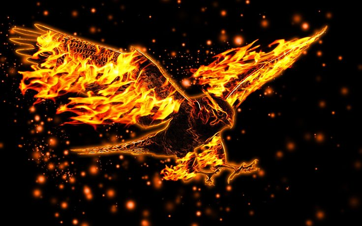 Burning eagle wallpaper | Abstract HD Wallpapers 1