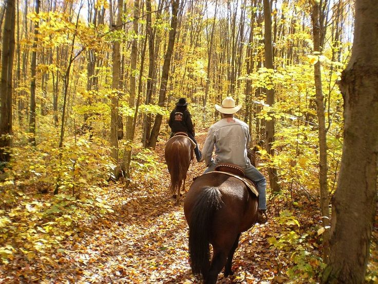 Escape to the Smoky Mountains with a special someone. These top Wears Valley couples activities offer ideas for romance and stress-free experiences. #travel #itrip #vacationrental