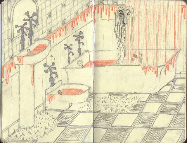Bathory-themed bathroom with afghan hound