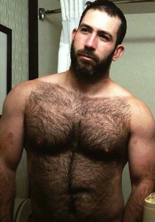 Gay hairy action