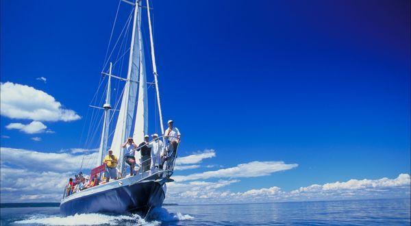 La force silencieuse du vent vous mène, à bord d'un grand voilier confortable, au large de Grand Manan, le meilleur lieu d'observation des baleines. | Whales-n-Sails Adventures | Nouveau Brunswick, vacances au Canada #ExploreNB