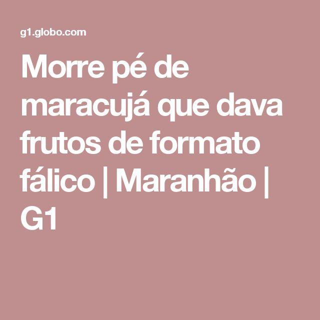 Morre pé de maracujá que dava frutos de formato fálico | Maranhão | G1