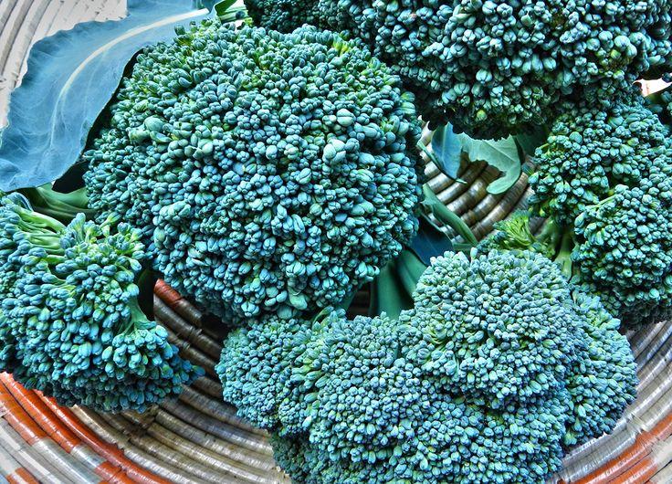 #Broccoli #ricette #recipe #sardegna #sardinia