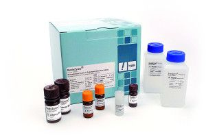 Endozyme Endotoxin Detection Specifications and advantages: -Highly sensitive recombinant Factor C endotoxin detection assay, measurement range 0.005-50 EU/ml -No false-positive glucan reaction due to endotoxin-specific recombinant technology -Excellent reliability and lot-to-lot consistency -All needed reagents included in the kit -No animal material, therefore saving the diminishing horseshoe crab population -For laboratory and research use only