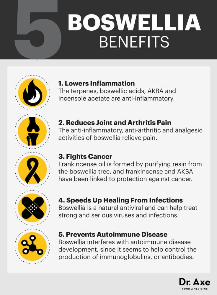 Boswellia benefits - Dr. Axe http://www.draxe.com #health #Holistic #natural