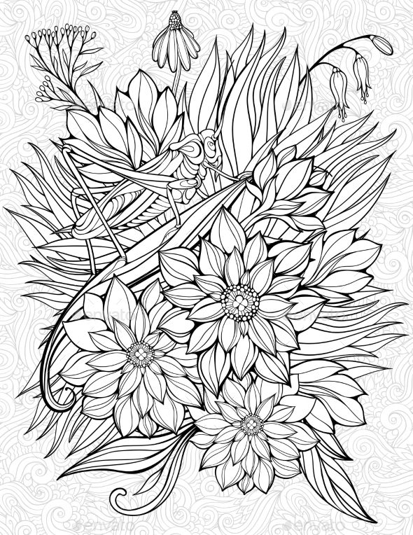 Coloring Page with Grasshopper