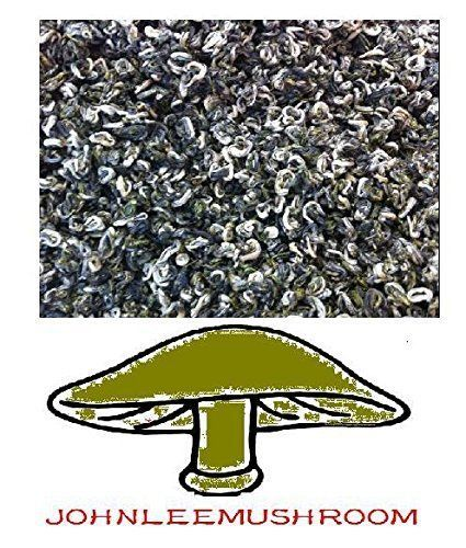 Green Tea From China, Premium Grade 740 Gram Loose Leaf Bag Packing JOHNLEEMUSHROOM http://www.amazon.com/dp/B00WBQHIY2/ref=cm_sw_r_pi_dp_.7J4vb093TSAG