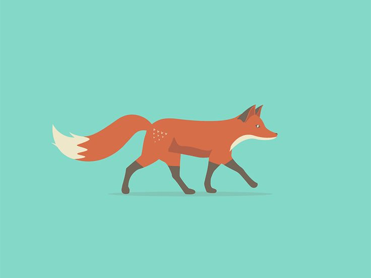 I animated one of @Andy Hau 's wonderful illustrations: Quinn the Fox!   Be sure to check out his work!   andyhau.com  dribbble.com/AndyHau
