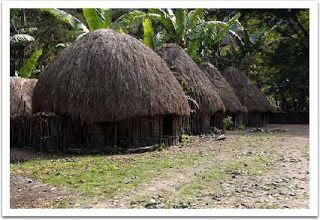 Honai home - Papua Traditional House
