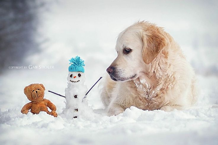 Fotograf Olaf?!! von Gabi Stickler auf 500px