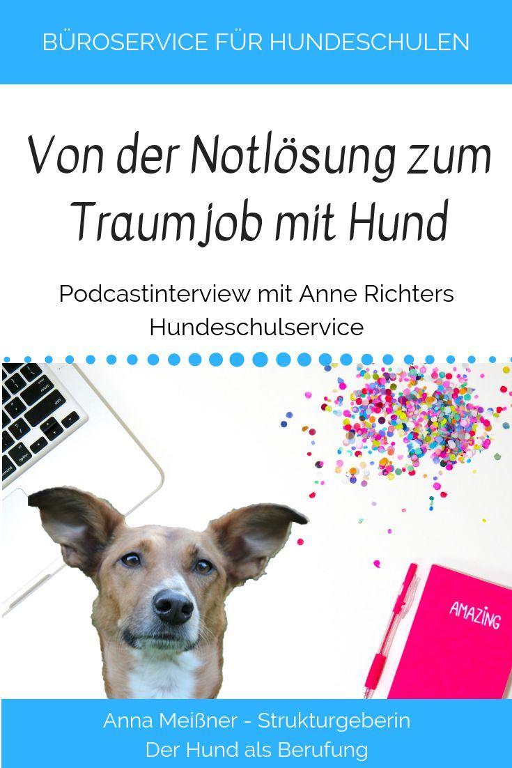 Tl 21 Wie Man Auf Die Idee Kommt Den Weltweit Ersten Buroservice Fur Hundeschulen Zu Grunden Mit Anne Richters Hundeschule Hundetrainer Ausbildung Hunde