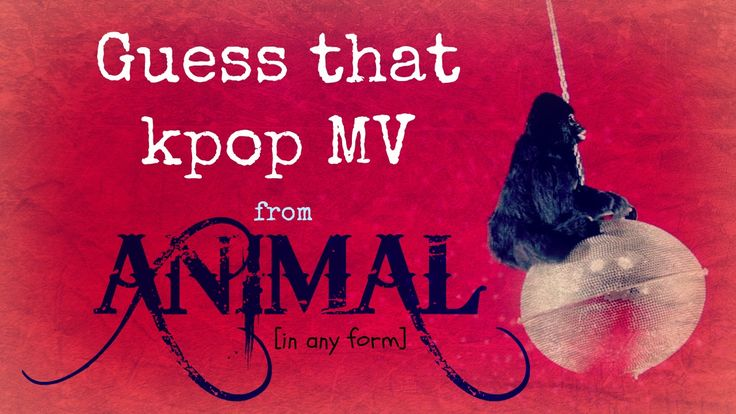 Guess That Kpop MV from ANIMAL (in any form)