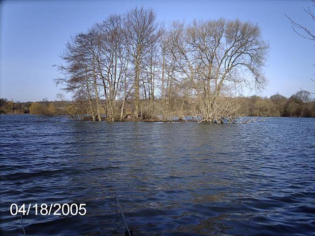 Badshot Lea Big Pond