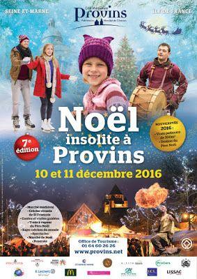mes 3 loulous: Venez vivre un Noël insolite et féerique à Provins...