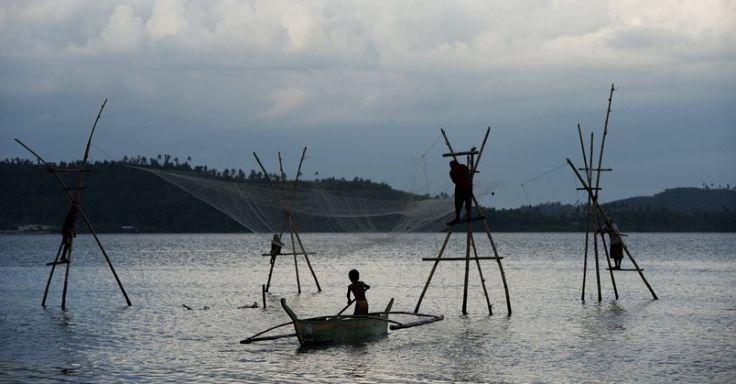 Pescadores filipinos ficam em palafitas de bambu enquanto pescam na baía em Tacloban, ilha oriental de Leyte.  Fotografia: Noel Celis/AFP.