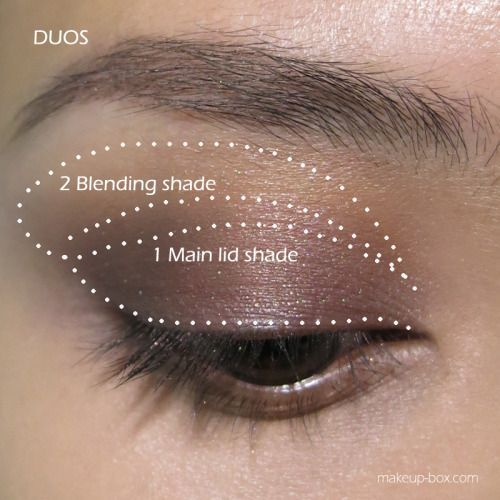 2 Eyeshadows Look: