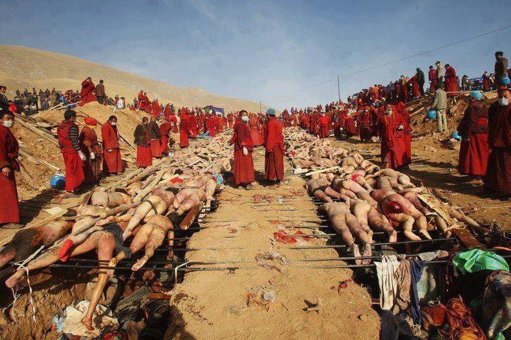 Muslims in Burmah: Kill Muslim, Providence Lifesav, Lifesav Assistant, Save Muslim, Burma, People