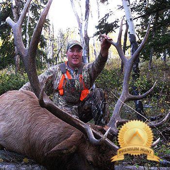 Guided elk hunts in Wyoming