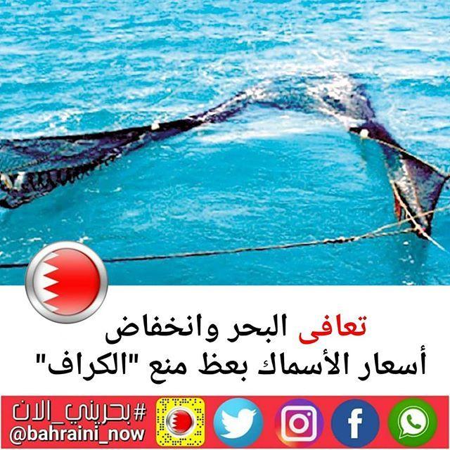 تعافى البحر وانخفاض أسعار الأسماك بعظ منع الكراف أكد عدد من البحارة أن قرار وقف الصيد بـالكراف أدى لتعافي البحر بشكل جيد خلال Outdoor Movie Posters Waves