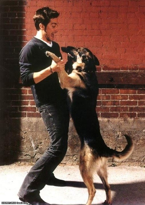 Celebs love dogs. Jake Gyllenhaal - father of Atticus