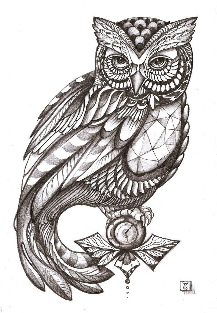 tattoo owl coloring pages - photo#28