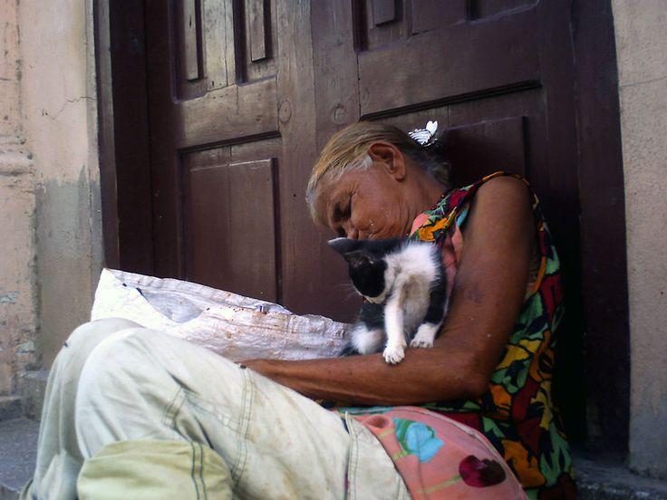 Mi gato Vinagrito (Votar por esta obra en http://observarte.net)