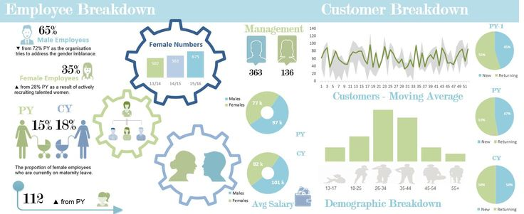 A Gender male female infographic in Excel.