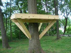 Tree platform, steps at http://villagecustomfurniture.wordpress.com/2012/06/25/tree-fort-platform/