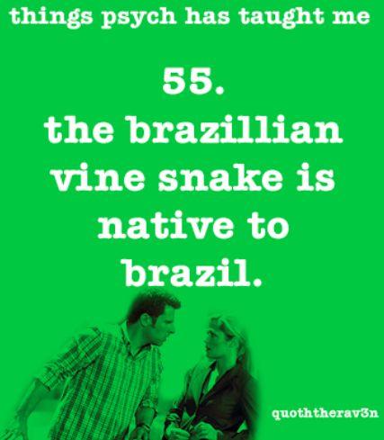 55. The Brazilian Vine Snake is native to Brazil. http://quoththerav3n.tumblr.com/archive