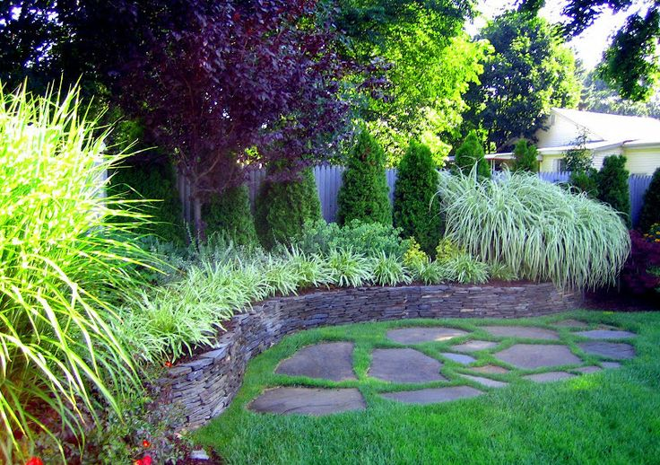 Landscape plantings thundercloud plum tree arborvitae for Arborvitae garden designs
