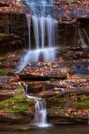 Image result for Parque nacional de las Grandes Montañas Humeantes, Tennessee, Estados Unidos