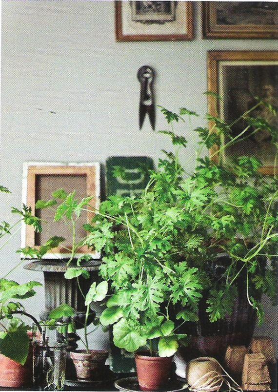 Green decoration: The taste of Petrol and Porcelain | Interior design, Vintage…