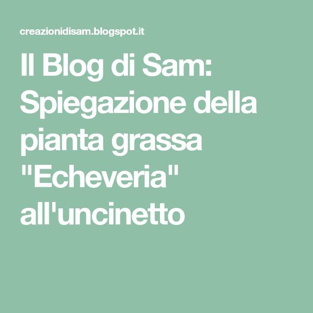 """Il Blog di Sam: Spiegazione della pianta grassa """"Echeveria"""" all'uncinetto"""
