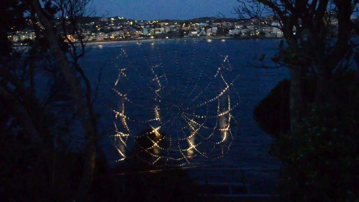 McDermott Baxter Web of Light  SXS  Bondi