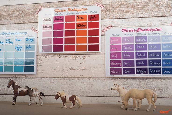 Stundenplan aus Farbkarten Musterkarten