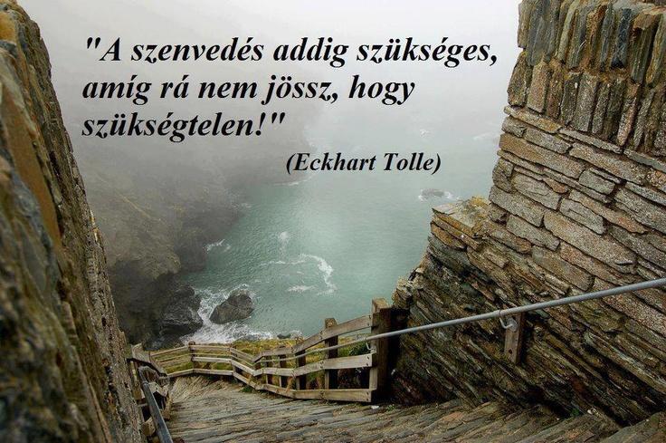 Eckhart Tolle, spirituális tanító gondolata a szenvedés szükségességéről. A kép forrása: Az élet igazságai # Facebook