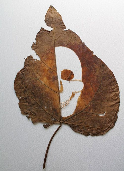 #Leave #Art By Lorenzo Duran – Astonishing Art Work  #leafart