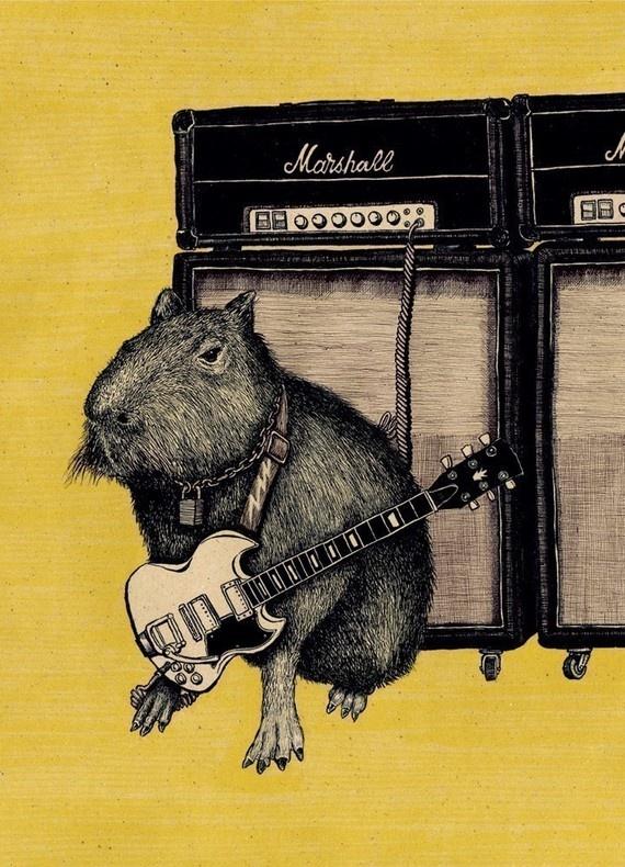 Image result for capybara pancake