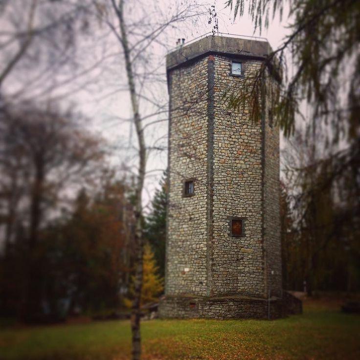 Netradiční vyhlídková stavba na vrcholu Studený vrch (660 m n.m.) je v současnosti jedinou zpřístupněnou stavbou svého druhu u nás. Nedávno se začala využívat jako rozhledna. Najdete ji v pohoří Brdy nedaleko od Berouna či Dobříše. #czechrepublic #ceskarepublika #vylet #dnescestujem #cestovani #traveling #travelling #lookout #lookouttower #nature #brdy #rozhledna #trip #sbatuzkem #instatravel #instaphoto #travelblog #travelblogger #blogger  #studenyvrch